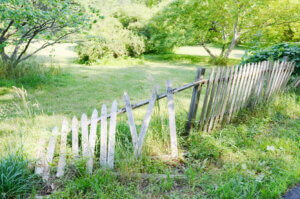 broken fence. don't beg to fix the fence!